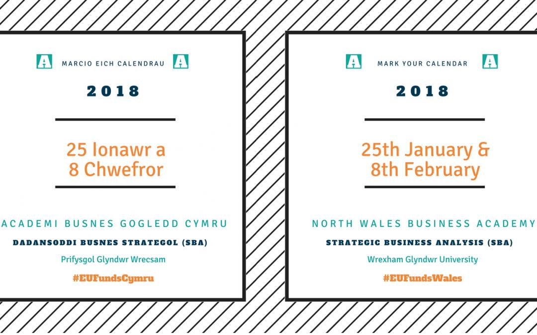 NWBA | Wrexham Glyndŵr University | March 2018 SBA | Strategic Business Analysis | Training and Mentoring